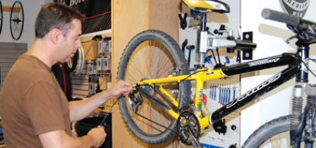Focus On Bikes At Action Cyclery