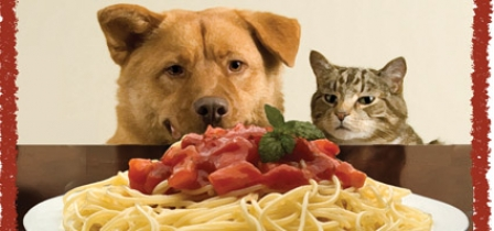 """Spay""-ghetti dinner to raise money for All Animals Matter"