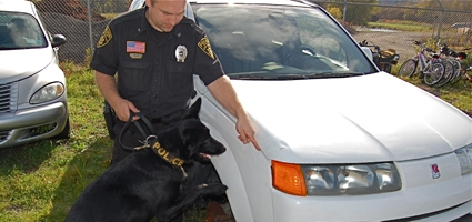 Police K-9 Training Comes To Norwich