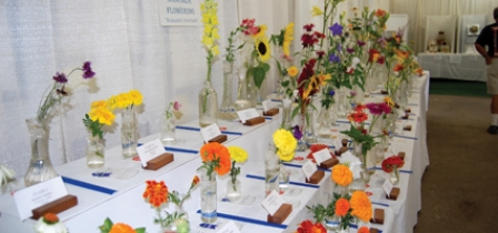 Flower displays abound at Chenango County Fair
