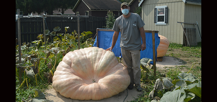 Chenango Valley Home grows 968 pound pumpkin